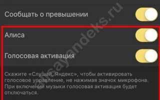 Алиса в «Яндекс.Навигаторе»: польза, установка, настройка, использование и отключение</a></noscript>