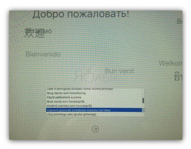 camera-on-mac_desible-recovery-mode-yablyk.jpg