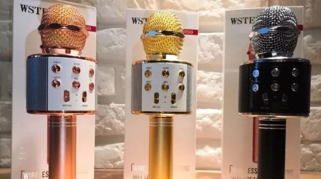 mikrofony-wster-osobennosti-obzor-modelej-kriterii-vybora.png