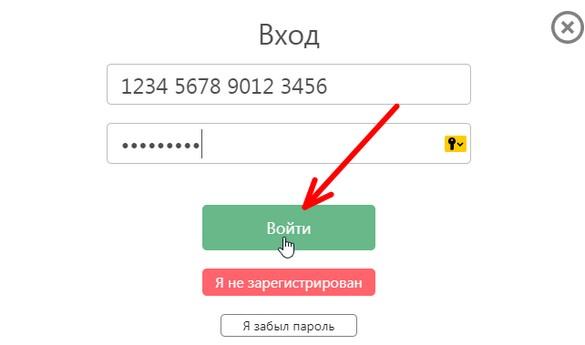 avtorizatsiya-9.jpg