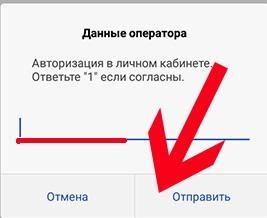 lichnyj-kabinet-tele29.jpeg