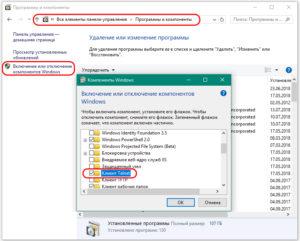 Vklyuchit-galochku-Klient-Telnet--300x241.jpg