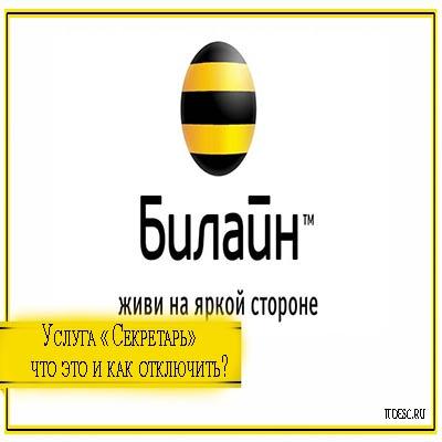 bilayn-kak-otklyuchit-secreta-icon.jpg