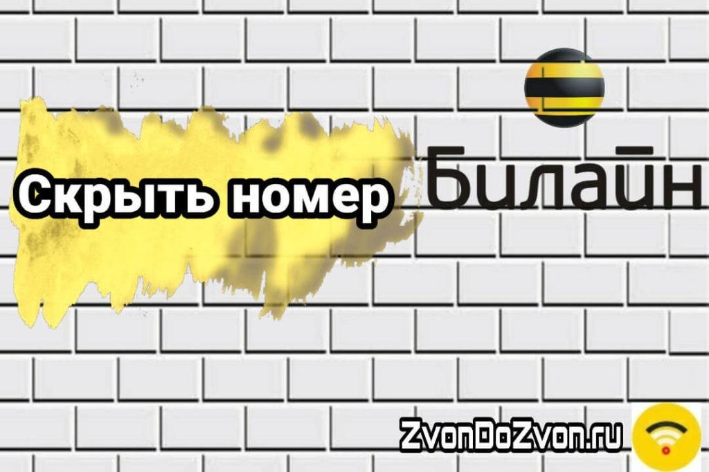 skrit-nomer-beeline-1024x682.jpg
