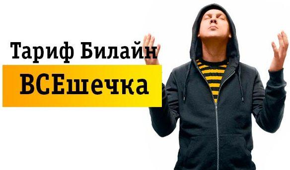 beeline-vseshechka-e1535222571666.jpg