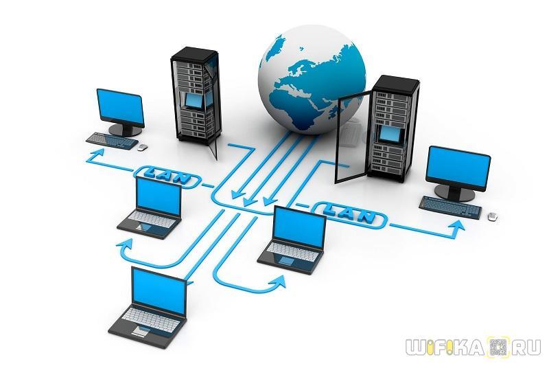 network0.jpg