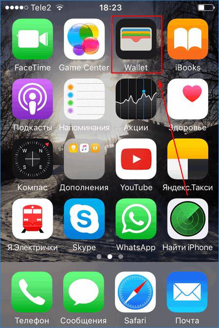prilozhenie-wallet-dlya-svyazki-s-apple-pay-1.png