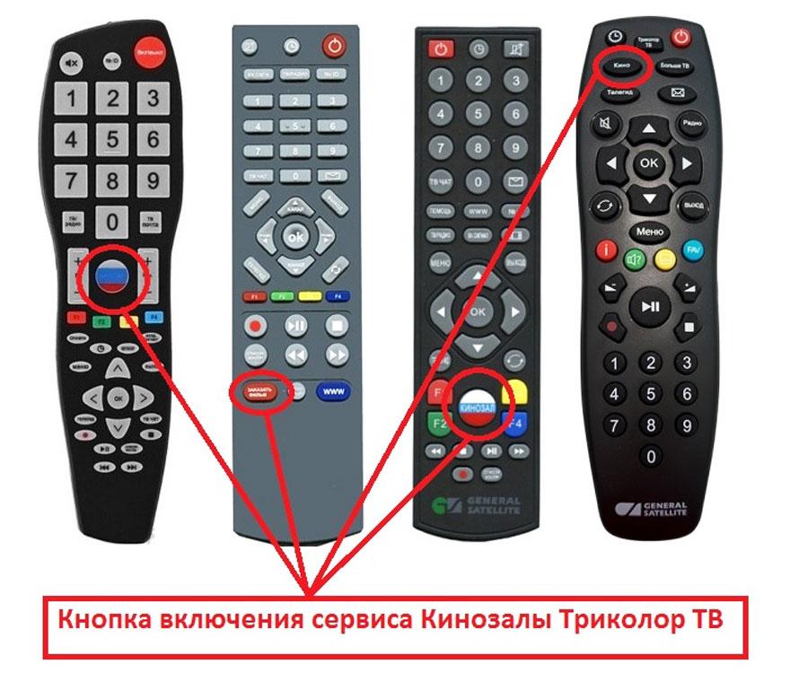 knopka_kinozal_tricolor.jpg