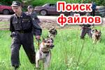 Poisk-faylov.png